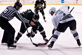 PHOENIX, AZ - DECEMBER 18: Utah Grizzlies wing Scott Thauwald (#24) and Phoenix Roadrunners center G