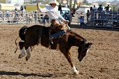 APACHE JUNCTION, AZ - FEBRUARY 28: A competitor rides a bucking horse in the saddle bronc competitio