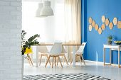 Dining Room With Natural Decor poster
