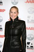 LOS ANGELES - FEB 6:  Sharon Stone arrives at the AARP's 11th Annual Movies For Gownups Awards at Be