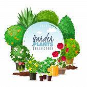 Garden Plants Frame Illustration. Outdoor Garden Landscape Isolated Plants Frame Illustration. Summe poster