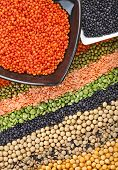 colorful striped rows of dry lentils, grain ,peas, groats , soybeans, legumes, rice, backdrop with