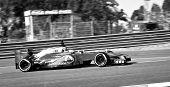 Jenson Button At Jerez 2012