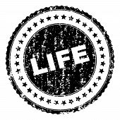 Life Seal Print With Distress Style. Black Vector Rubber Print Of Life Title With Grunge Texture. Ru poster