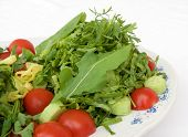 Spicy Salad With Tomato Lettuce Rocket And Cress poster
