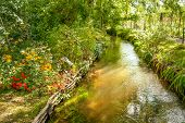 Water Stream Running Through Famous Claude Monet Garden In Giverny, Normandy, France poster