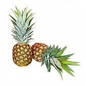 Two Pineapples On White