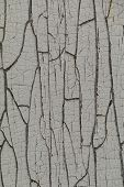 Peeling Paint On A Wooden Surface. The Texture Of The Old Paint. Cracked Old Paint On A Wooden Wall. poster