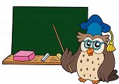 Owl_Teacher_With_Blackboard