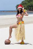 image of hula dancer  - hawaii hula dancer posing on the beach - JPG