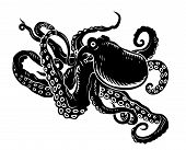 Ozean-Oktopus