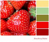 A background of fresh, juicy strawberries. Colour palette with complimentary colour swatches