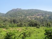 Bhagwan Mahaveer Sanctuary And Mollem National Park