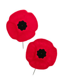 image of lapel  - Two red poppy lapel pins for Remembrance Day - JPG