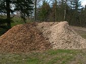Piles Of Wood Chips Mulch