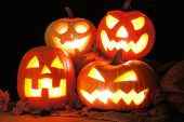 stock photo of jacking  - Group of Halloween Jack o Lanterns lit up at night - JPG