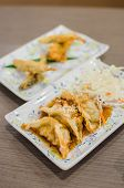 Deep Fried Fish And Gyoza Dumpling Set