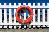 Lifebuoy On Wooden Fence