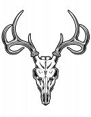 stock photo of deer horn  - fully editable vector illustration of deer skull - JPG