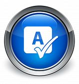 Spell Check Icon Glossy Blue Button