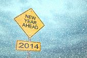 New Year Ahead 2014