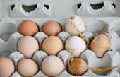 Unwashed Fresh Organic Eggs