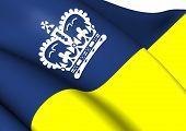 Flag Of Regina