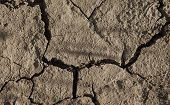 Close-up Of Arid Cracked Earth