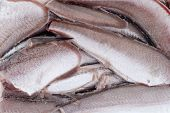 stock photo of hake  - Frozen hake fish closeup as food background - JPG