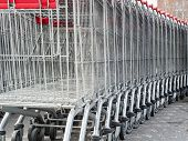 Several Shopping Carts