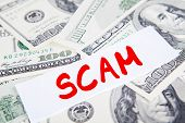 picture of fool  - Scam concept - JPG