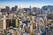Tokyo, Japan cityscape from Bunkyo Ward.