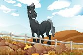 Illustration of a smiling gray horse near the wooden fence