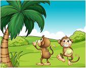 image of landforms  - Illustration of the two monkeys near the coconut tree on a white background - JPG