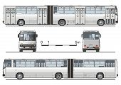 picture of motor coach  - Vector detailed urban bus articulated - JPG