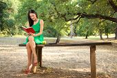 Young Women Reading Book In The Park