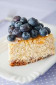 Blueberry Vanilla Cheesecake