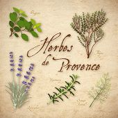 Herbes De Provence, Herb Blend