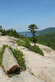 Areal view from the South Bubble Mountain At Acadia National Park, Maine, USA