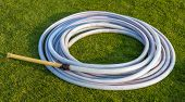 White Rubber Band On Green Grass Field