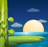 Illustration of a full moon rising