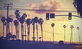 Vintage Sunset Picture Of Palms And Poles On Street Against Sun.