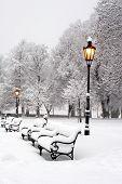 Morgen in Winter Park bratislava