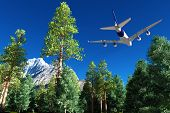 Passenger plane over a forest.
