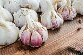 Bio Garlic From Bio Herbs Garden