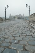 Road leading to the medieval castle. Fortification historical landmark. Kamenetz-Podolsk, Ukraine, E