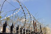 Barbed Wire Fence At The Prison
