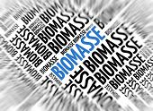 German marketing background - Biomasse (Biomass) - blur and focus