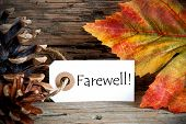 Autumn Label With Farewell