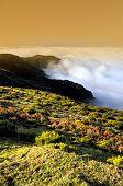 Valley Lomba de Risco Plateau of Parque natural de Madeira Madeira island Portugal